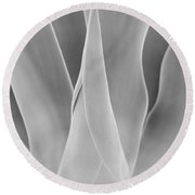Round Beach Towel featuring the photograph Agave Waves   by John F Tsumas