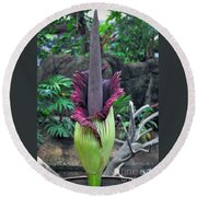 Corpse Flower Round Beach Towel