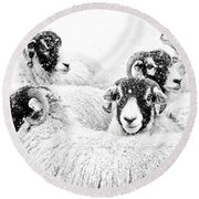 In Winters Grip Round Beach Towel by Janet Burdon
