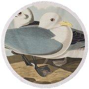 Kittiwake Gull Round Beach Towel by John James Audubon