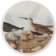 Red Backed Sandpiper Round Beach Towel by John James Audubon