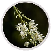 Round Beach Towel featuring the photograph  White Fireweed by Jouko Lehto