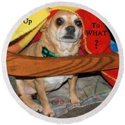 Round Beach Towel featuring the photograph  You Woke Me Up Card by Debbie Stahre