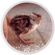 02_contact With Nature Round Beach Towel