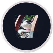 Koneko Means A Kitten Round Beach Towel