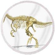 3d Rendering Of An Allosaurus Dinosaur Round Beach Towel