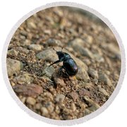 A Insect Named Bracken Clock With Brown Wings Round Beach Towel