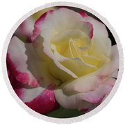 A Rose Round Beach Towel by Cathy Donohoue