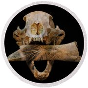 Round Beach Towel featuring the photograph A Taste For Bones by Ronda Broatch