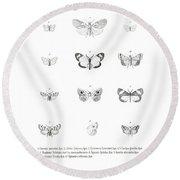 Round Beach Towel featuring the drawing African Butterflies by Bernhard Wienker