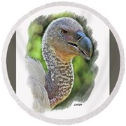 African Griffon Vulture Round Beach Towel