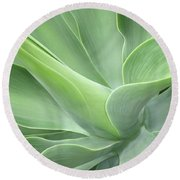 Agave Attenuata Abstract Round Beach Towel