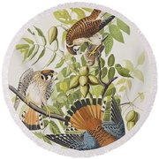 American Sparrow Hawk Round Beach Towel