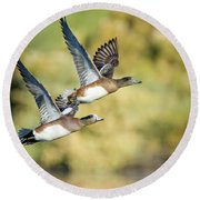 Round Beach Towel featuring the photograph American Widgeon by Tam Ryan