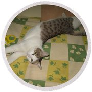 Ammani The Cat Round Beach Towel