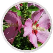 Aphrodite Rose Of Sharon Hibiscus 9 Round Beach Towel by Brooks Garten Hauschild