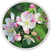 Round Beach Towel featuring the photograph Apple Blossoms by Kristin Elmquist