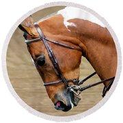 Arabian Horse Show Round Beach Towel