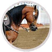 Arabian Show Horse 3 Round Beach Towel