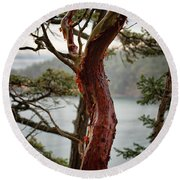 Arbutus Tree Round Beach Towel