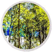 Round Beach Towel featuring the photograph Aspen Forest Abstract by Jennifer Lake