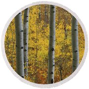 Round Beach Towel featuring the photograph Aspen In Autumn At Mcclure Pass by Jetson Nguyen