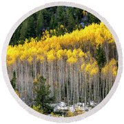 Aspen Trees In Fall Color Round Beach Towel
