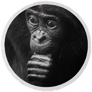 Round Beach Towel featuring the photograph Baby Bonobo Portrait by Helga Koehrer-Wagner