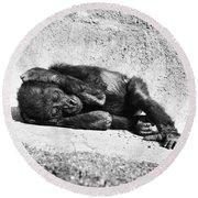 Baby Gorilla Round Beach Towel by Ylla