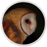 Barn Owl Profile Round Beach Towel