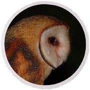 Barn Owl Profile Round Beach Towel