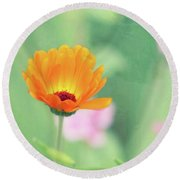 Round Beach Towel featuring the photograph Be Beautiful by Robin Dickinson