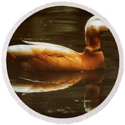 Round Beach Towel featuring the photograph Beautiful Rust Goose by The 3 Cats