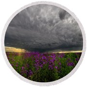 Round Beach Towel featuring the photograph Beauty And The Beast by Aaron J Groen