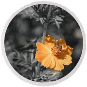 Bee On Flower Round Beach Towel