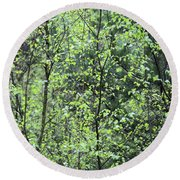 Round Beach Towel featuring the photograph Birch Leaves by Dariusz Gudowicz