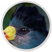 Bird Face Round Beach Towel