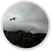 Round Beach Towel featuring the photograph Bird Over Glacier - Alaska by Madeline Ellis