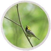 Black-throated Green Warbler Round Beach Towel