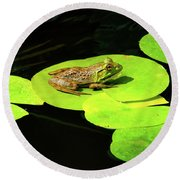 Blending In Round Beach Towel by Greg Fortier
