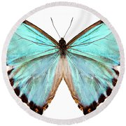blue butterfly species Morpho portis thamyris Round Beach Towel
