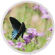 Blue Swallowtail Butterfly  Round Beach Towel