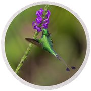 Booted Racket-tail Round Beach Towel