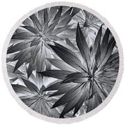 Round Beach Towel featuring the photograph Botanical by Wayne Sherriff