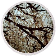 Branch One Round Beach Towel