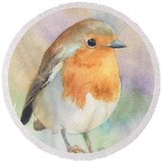 British Robin Round Beach Towel