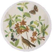 Brown Headed Worm Eating Warbler Round Beach Towel by John James Audubon
