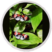 Butterflies Round Beach Towel by Sandy Taylor