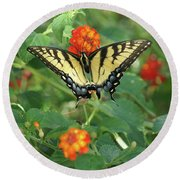 Round Beach Towel featuring the photograph Butterfly And Flower by Debra Crank