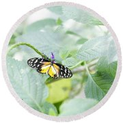 Tiger Butterfly Round Beach Towel